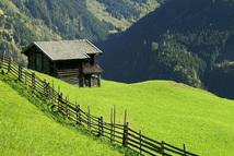 Bergwiese im Zillertal