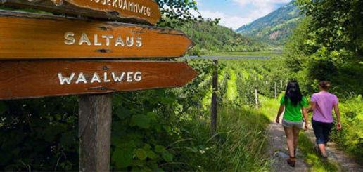 Saltaus