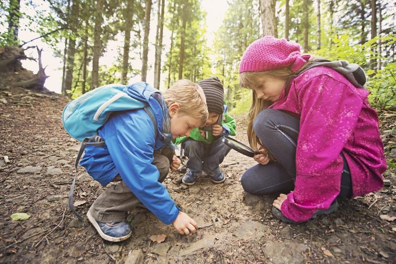 Kinder inmitten der Natur