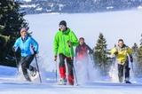 Gruppe Schneeschuh-Wanderer