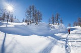 Schneeschuh-Tour