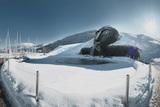 Riese im Winter - Swarovski Kristallwelten