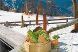 Zammer Alm Terrasse im Winter