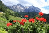 Kreuzkofel (3026m) von Wengen gesehen