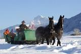 Pferdekutschen-Fahrt im Winter