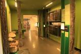 Römermuseum - Museum Mansio Sebatum