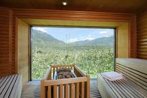 Sauna Bio mit Blick