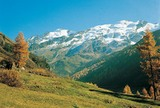 Weisskugel (3.739m) - Langtaufers